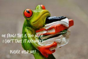 frog-1339897_1920 met tekst 500